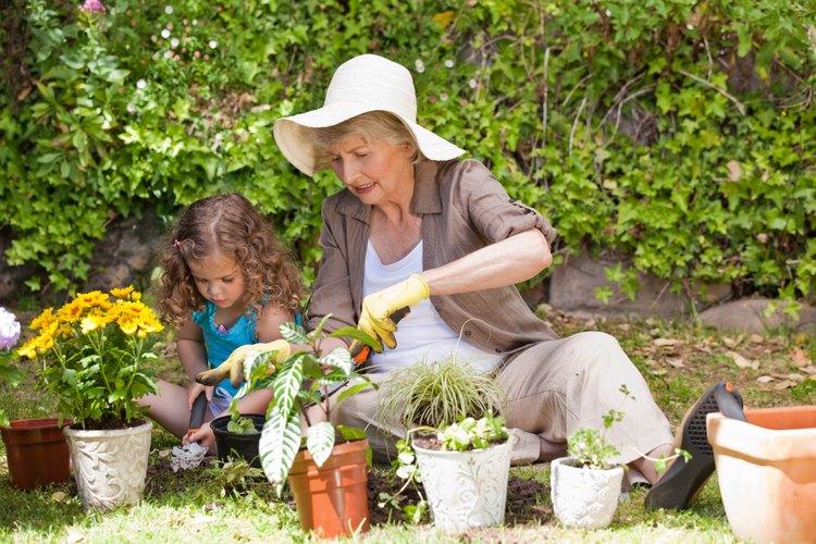 Muchos padres de las madres mayores ya están retirados y gustosos de ayudar.