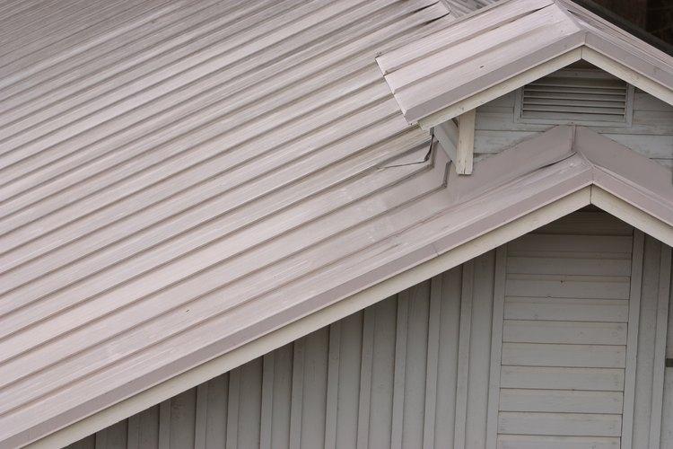 Espolvorea el insecticida en polvo en tu ático.
