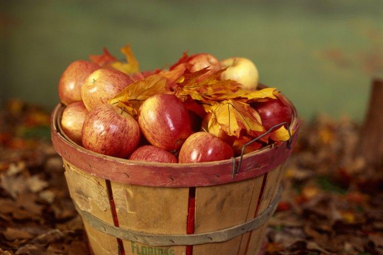 Las canastas almacenan la fruta después de la eliminación del árbol.