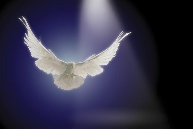 El Espíritu santo otorga dones.