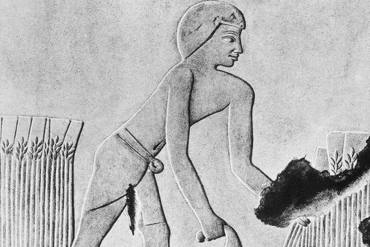 La hoz podía hacerse con un bastón de madera corto o largo.