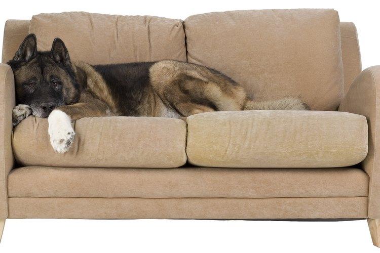 Las cinchas de tapicería se usan para hacer a los muebles más resistentes y cómodos.