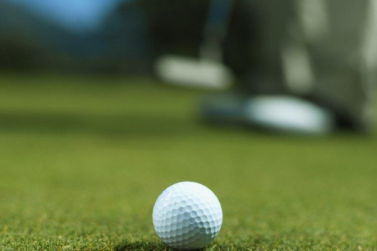 La hierba bermuda es sembrada ampliamente en campos de golf.