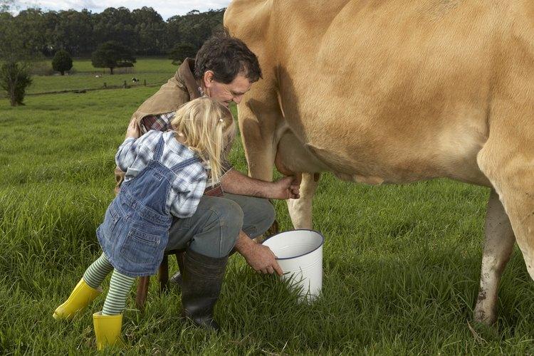 No se puede extraer leche sólo por apretar la tetilla.