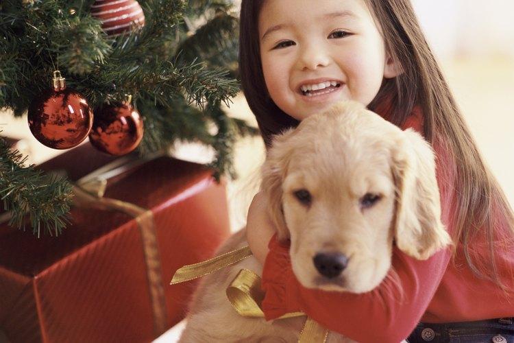 Un cachorro debajo del árbol de Navidad.