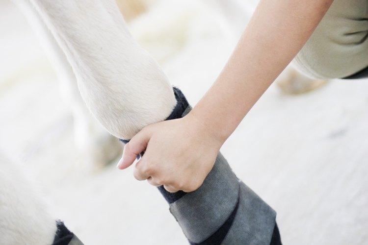 Puedes ser capaz de insertar un paquete plegable de hielo en una bota deportiva o envoltura.
