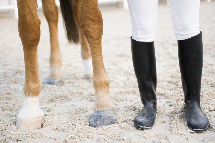 Cualquier lesión en la pata de tu caballo es causa de preocupación, pero el menudillo es un área particularmente vulnerable.