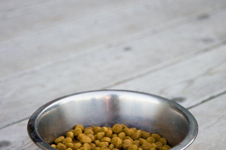 Casi todos los los alimentos para mascotas contienen cenizas.
