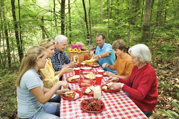 Cada lugar de acampaje en el campamento Protection Mountain tiene una mesa para comidas campestres.