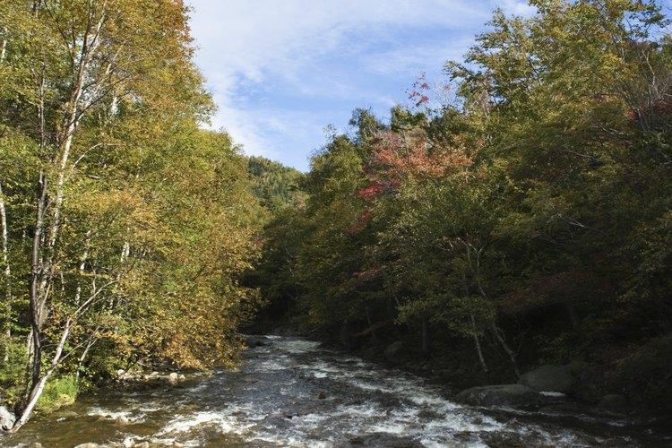 Adirondacks cuenta con miles de millas de cursos de agua.
