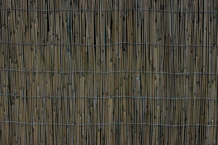 Cuelga una moldura decorativa alrededor del bambú para crear una apariencia de marco alrededor de los palos.