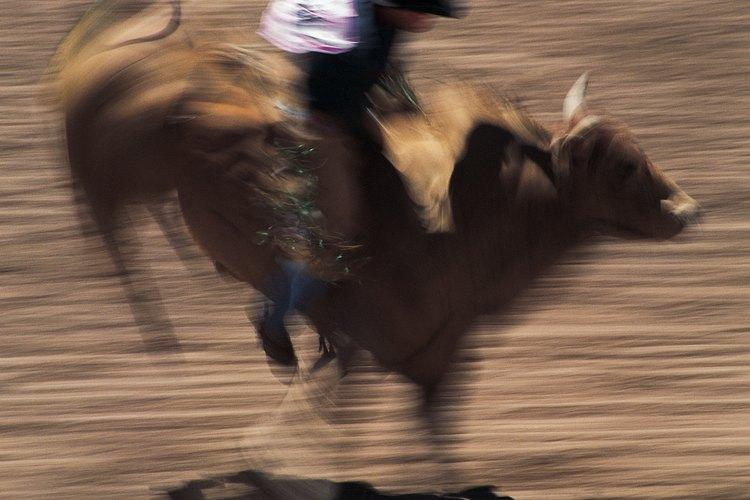 La monta de toros proporciona ingresos que totalizan millones para los vaqueros experimentados.