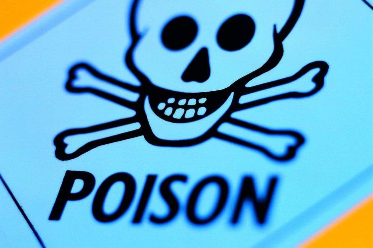 El cráneo y huesos en forma de cruz son un signo de peligro común que indica veneno.