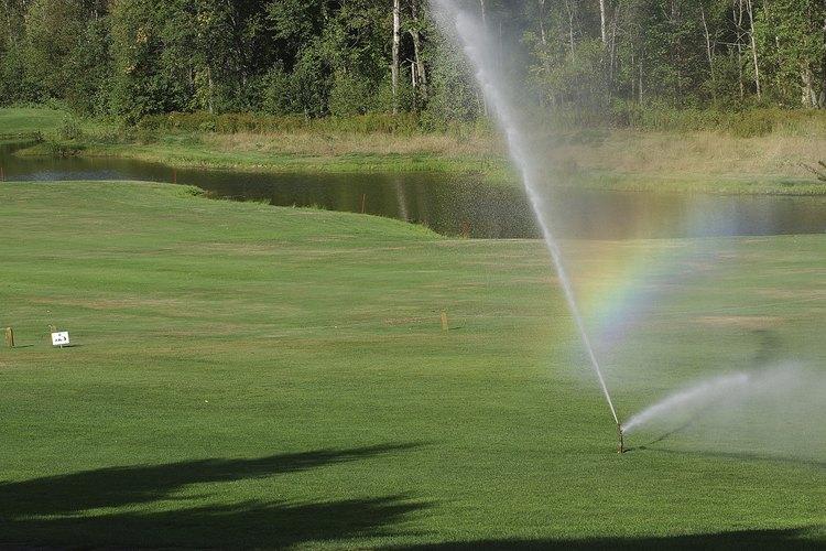 Los fertilizantes solubles en agua deberían ser regados luego de aplicarlos.