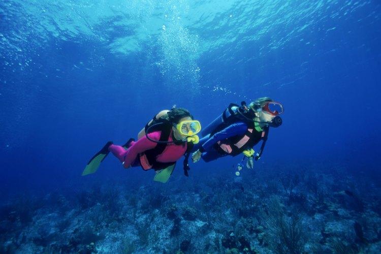 El buceo te permite descubrir un mundo nuevo bajo el agua.