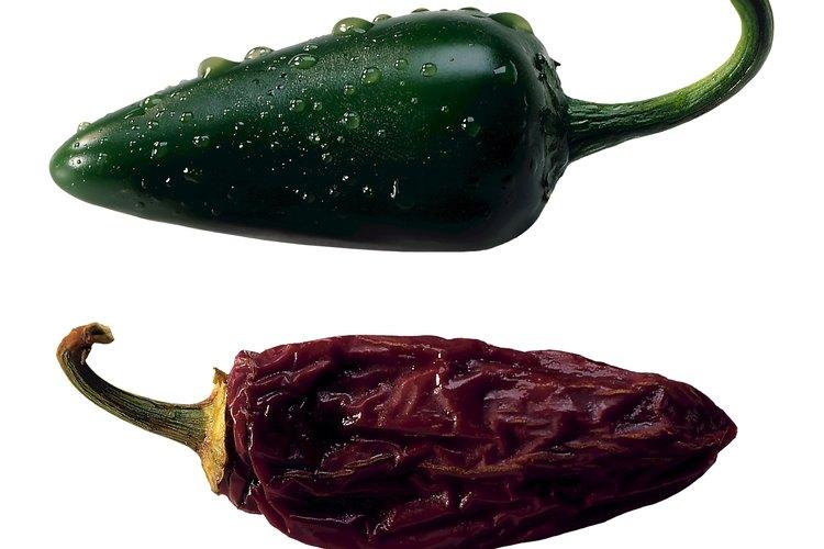 La falta de nutrientes necesarios para tu planta de pimiento puede causar una tensión en la planta.
