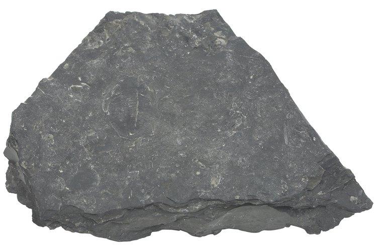 Une piedras naturales al concreto para crear un hermoso diseño.