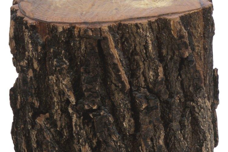 Convierte un tronco en una maceta rústica.