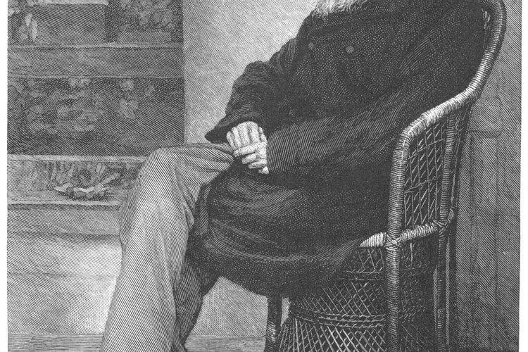 Darwin fue el primero en formar completamente la idea de la evolución del organismo.