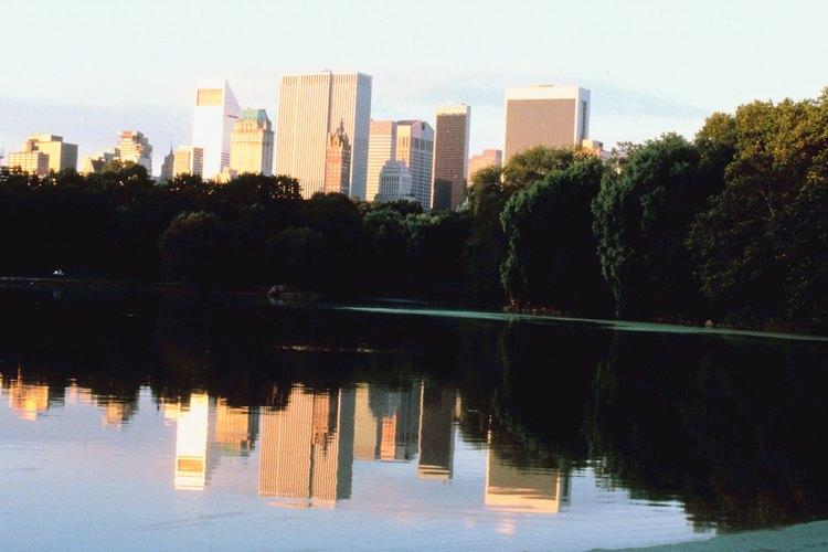 Central Park es el lugar ideal para una boda inolvidable.