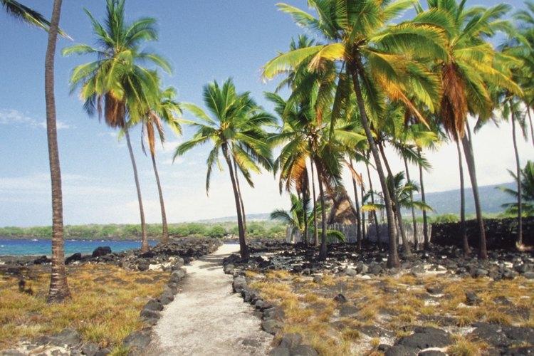 Recorre los senderos de los parques hawaianos.