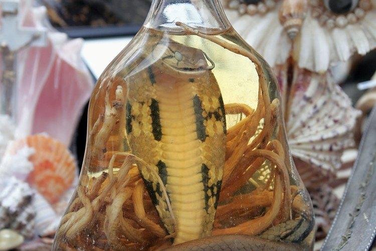 Tráfico de reptiles.