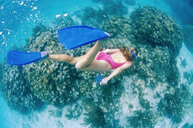 Con el buceo libre puedes explorar el mundo submarino, mientras aguantas la respiración.