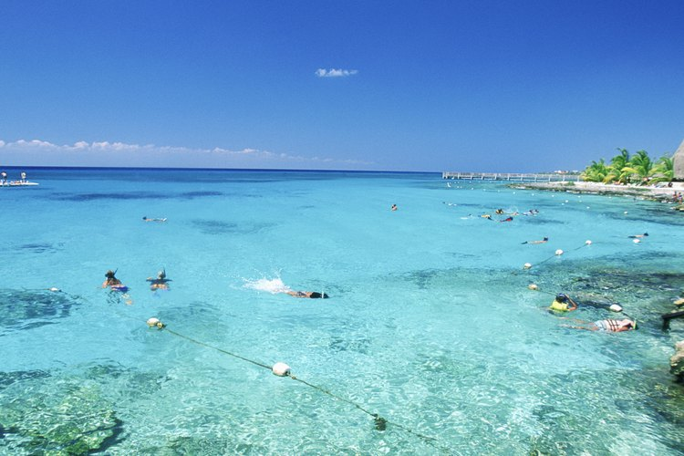 El Parque Nacional Chankanaab ofrece una variedad de actividades para los pasajeros que visitan el puerto de Cozumel.