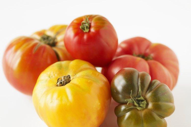 El riego insuficiente o excesivo puede provocar que la planta de tomate se marchite y se muera.