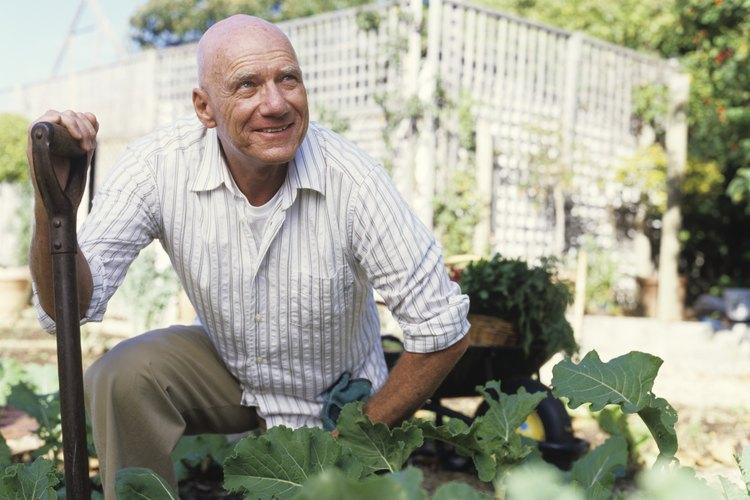 Revisa tu jardín para asegurarte de que no hay serpientes.
