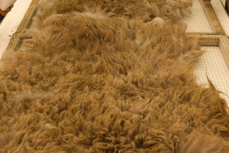 Los molinos de fibra industriales pequeños podrían aceptar órdenes del cliente para procesar tu lana.