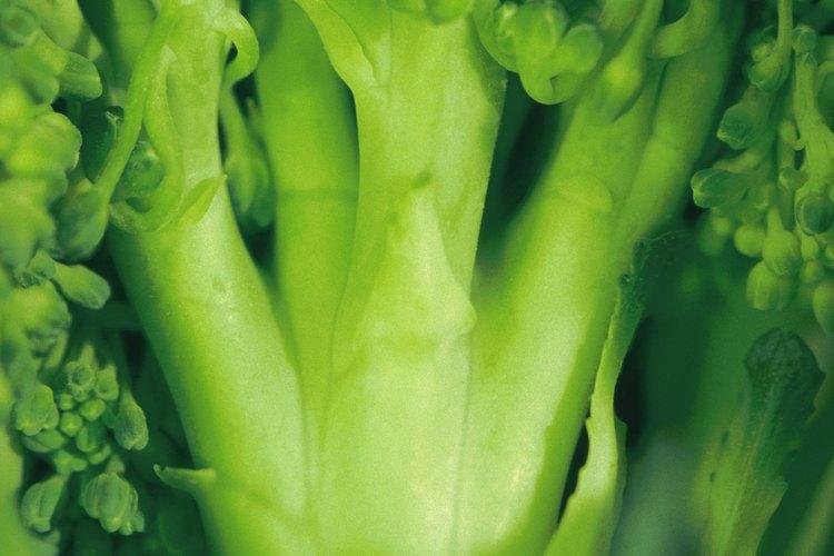 El brócoli tiene muchos recovecos que deben limpiarse cuidadosamente.