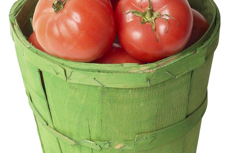 El nitrato de calcio puede ayudar a producir tomates grandes y saludables.