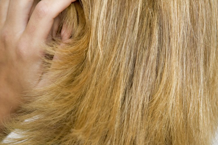 Aprende a cortar el cabello en capas para ahorrar un poco de dinero.