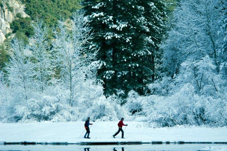 Ponte raquetas para nieve y explora las veredas de invierno de Yosemite.