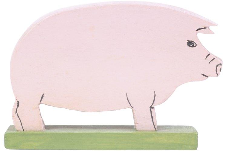 Los cestodos tienen un huésped intermedio antes de completar su ciclo de vida en el tracto digestivo del hospedador definitivo cuando son adultos.