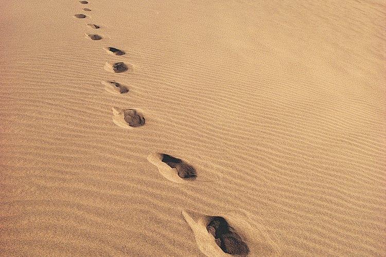Huellas en el desierto.