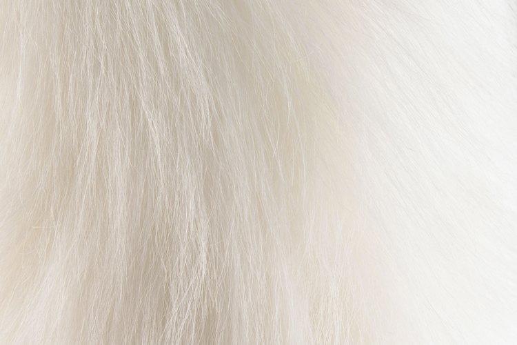 Escoge pieles sintéticas largas para crear una barba más realista.