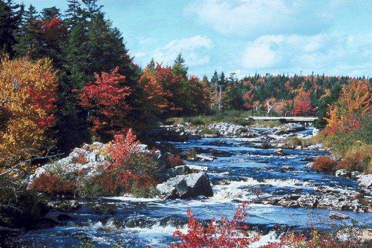 El paisaje de Nueva Escocia se complementa con impresionantes terrenos de senderismo.