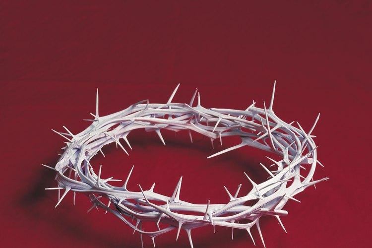 El tipo de corona se cree que ha torturado a Jesús de Nazaret.