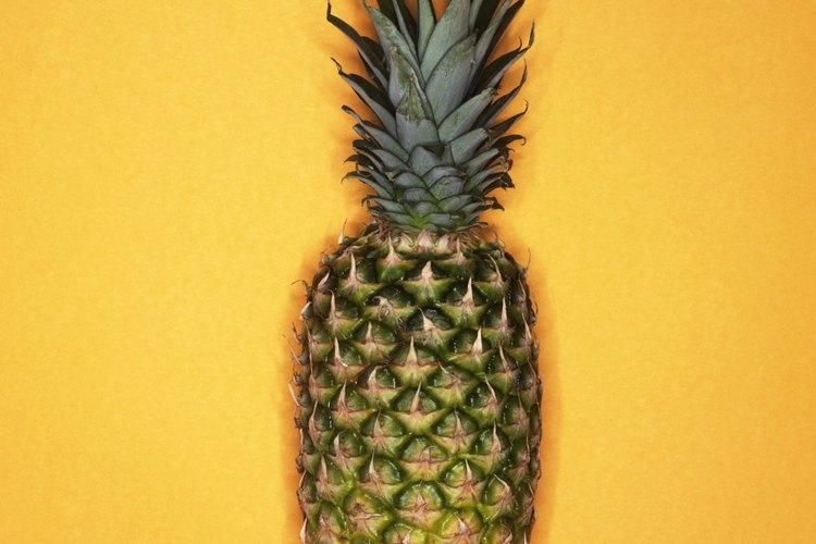Las piñas o ananás son fáciles de cultivar en casi cualquier clima durante todo el año.