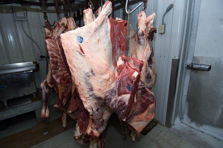 Las carnes que se han echado a perder son propensas a causar hedor.