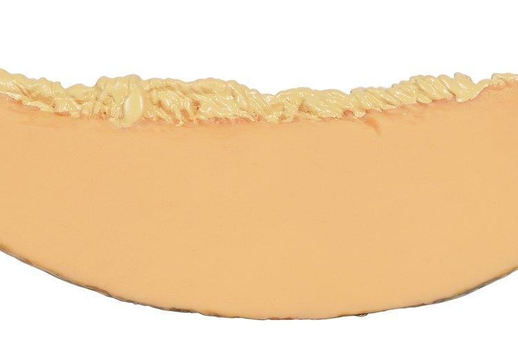 El cantalupo y otros tipos de melones por lo general no conducen a la hinchazón.