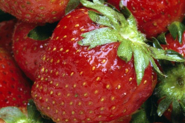 Cultiva fresas en casa usando una maceta para fresas.