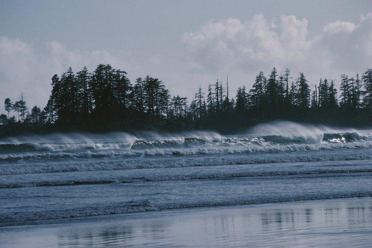 Olas rompiendo en Long Beach, que forma parte de la reserva Pacific Rim National Park Reserve of Canada.