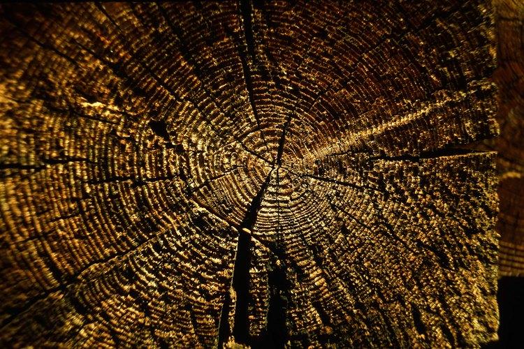 La madera se vuelve impermeable con tratamientos especiales.