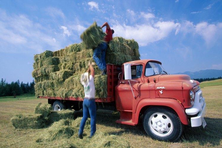 Queda prohibido el trabajo agrícola peligroso.