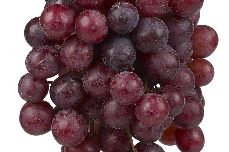 Las mejores uvas producen vinos óptimos