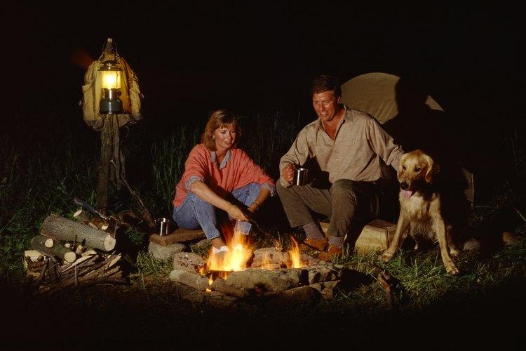 Tu perro merece también unas vacaciones en campamento.