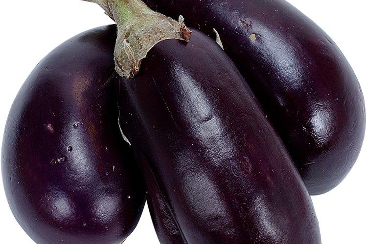 Esta variedad de berenjena de un violeta profundo está entre las más conocidas, pero hay muchas otras variedades para disfrutar.